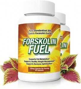 Forskolin Fuel Review Buy Walmart GNC Walgreens