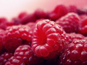 BioActive Raspberry Ketones Reviews weight loss